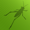 Grasshopperwebsite
